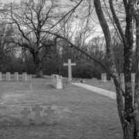 Сколько вас, погибших на чужбине, Преданных земле в чужой стране! :: Юлия Бабитко