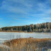 Замерзло рыбное озеро :: Милешкин Владимир Алексеевич