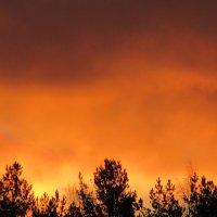 Рассвет похожий на закат :: Mariya laimite