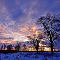 Когда холодно, но...  красиво :: Александр Бойко