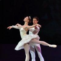 Звезды мирового балета в Кремле :: Светлана Яковлева