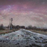 Зимняя дорога :: Vorona.L