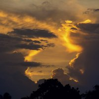 закат в Индии :: Елена Вторушина