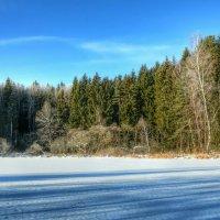 Природа Смоленщины зимой :: Милешкин Владимир Алексеевич