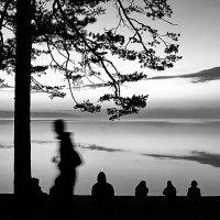 Туман, вечер :: Виктор Истомин