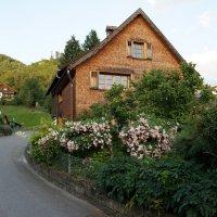 В альпийской деревушке.... :: Алёна Савина