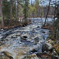 Карелия, на реке Шуя беломорская :: Валерий Толмачев