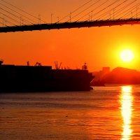 Maersk уходит в море :: Ingwar