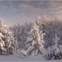 Зимняя сказка :: Владимир Тюменцев