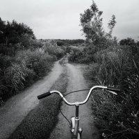 велосипед :: Юрий Михайлов