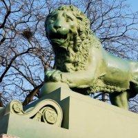 Лев на набережной Невы :: Елена Павлова (Смолова)