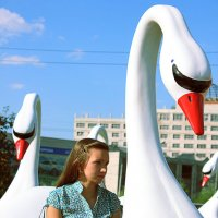 Лебеди :: Владимир Мальцев