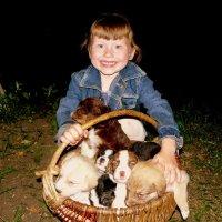 Полинка и щенки :: Александр Прокудин