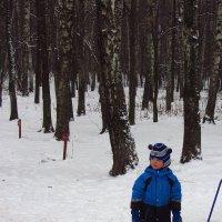 Даешь зиму детям! :: Андрей Лукьянов