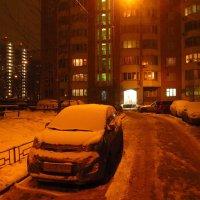 Перед оттепелью (завтра +8) :: Андрей Лукьянов
