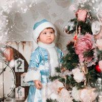 Снегурочка :: Юлия