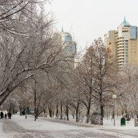 Пришла зима :: Олег Манаенков