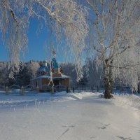 Зима пришла с морозами :: Светлана Медведева