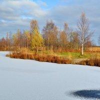 Поздняя осень 15года :: Николай Танаев