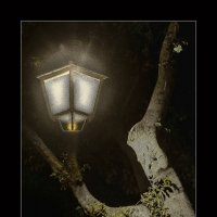 Фонарик и дерево :: Shmual Hava Retro