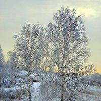 Зимний вечер. :: nadyasilyuk Вознюк