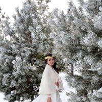 Невеста Зимой :: Константин Шарун