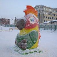 38-й  попугай ! :: Алексей Рыбаков