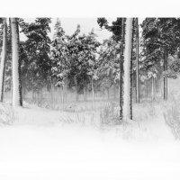 Снег :: Алексей