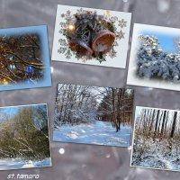 До Нового Года осталось 11 дней... :: Тамара (st.tamara)