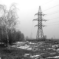 Туман :: Yuri Silin
