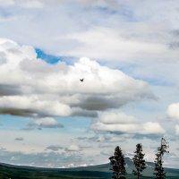 Страна облаков :: Владимир