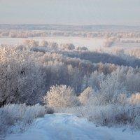 Спит природа зимним сном. :: nadyasilyuk Вознюк