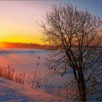 Рассветные краски... :: Александр Никитинский