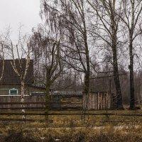 Декабрь в деревне :: Александр