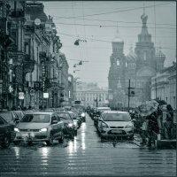 В Петербурге сегодня зима... :: Лариса Шамбраева