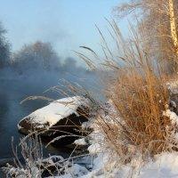 Снежный берег :: Мария Кухта