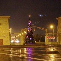 Скоро зима ??? Скоро Новый Год !!! :: Олег Попков