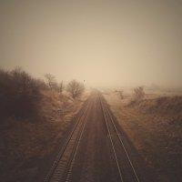 Осенняя дорога :: Виктория Власова