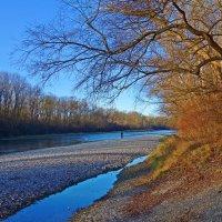Необычно теплый декабрь.... :: Galina Dzubina