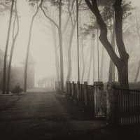 Башня в тумане :: Михаил Барановский