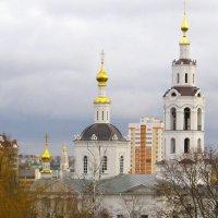 Купола. :: Борис Митрохин