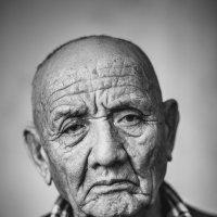 Портрет старика :: Анатолий Третяк