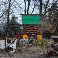 На детской площадке :: Константин Бобинский
