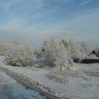 зима пришла :: Николай Одегов