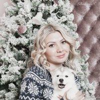 В гостях у хаски :: Наталья Лебедева