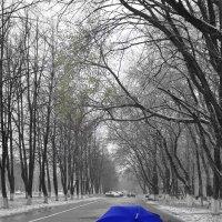 Вчера мне снился синий зонт... И завтра тоже будет снится... И послезавтра и потом... И так всегда :: Сергей Коновалов
