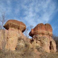 Кисловодск.Красные грибы. :: Светлана Винокурова