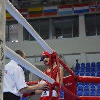 Бокс :: Елена Решетникова