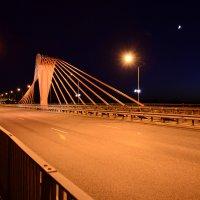 Южный мост! :: Евгений Джон