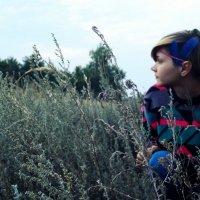 hide and seek :: Marina Tarakanova
